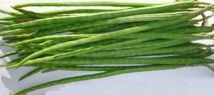 drumstick_vegetables
